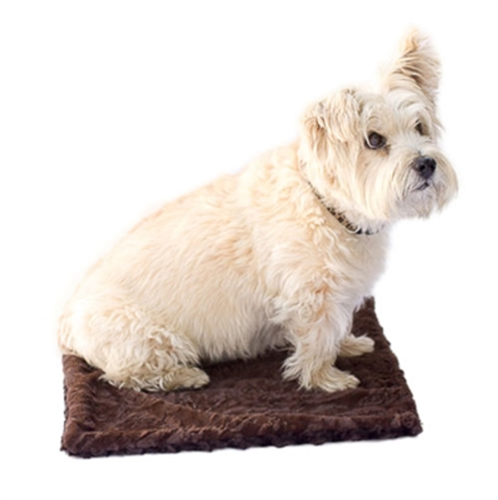 Brown Paisley Minkie Binkie Blanket from The Dog Squad