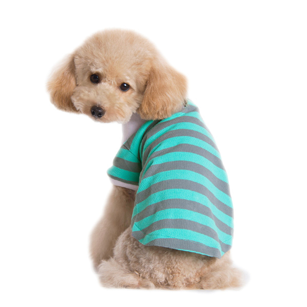 Dogo Dog Stripe Polo Shirt Gray/Green - Free Shipping