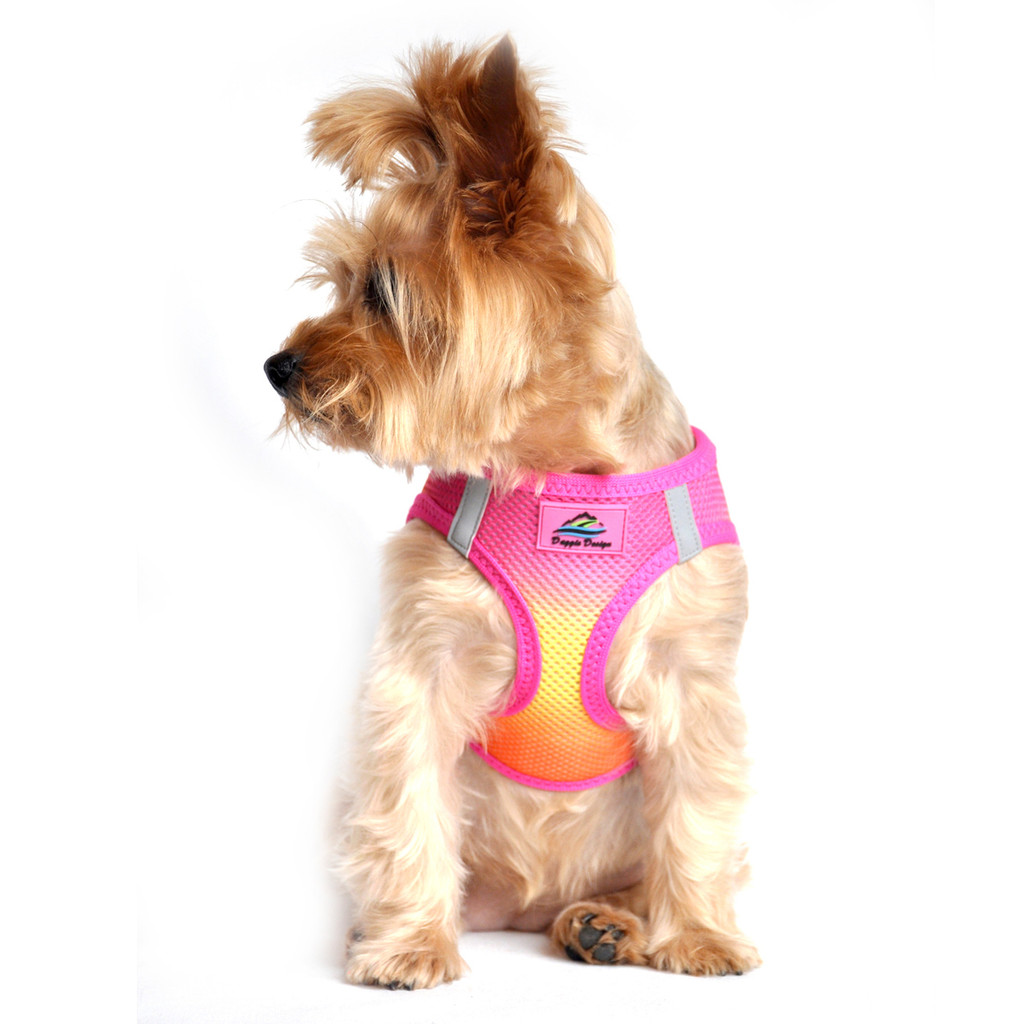 American River Dog Harness Ombre Collection - Raspberry Pink and Orange
