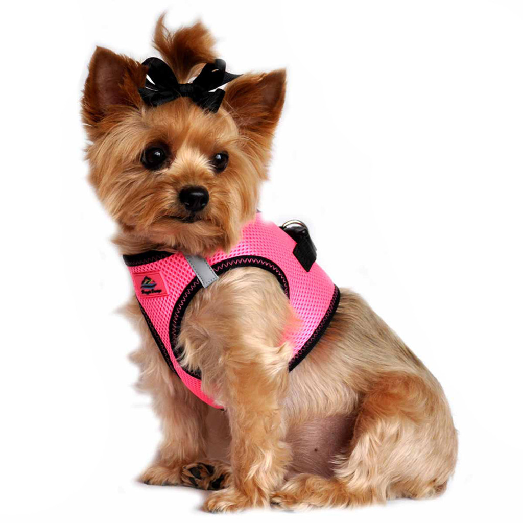 American River Dog Harness Top Stitch Collection - Iridescent Pink