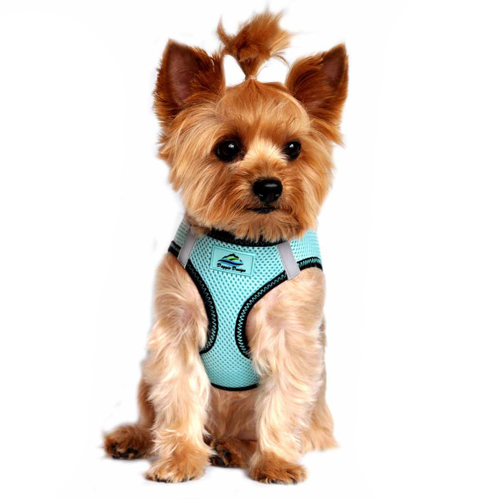 American River Dog Harness Top Stitch Collection - Aruba Blue
