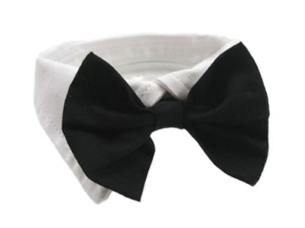 Black Satin Dog Bow Tie and Collar