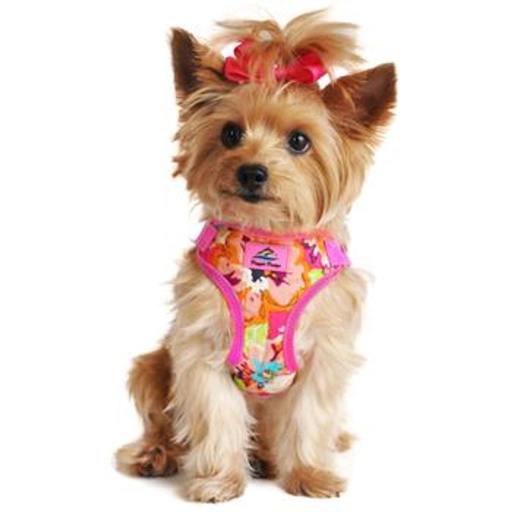 Wrap and Snap Choke Free Dog Harness - Aruba Raspberry
