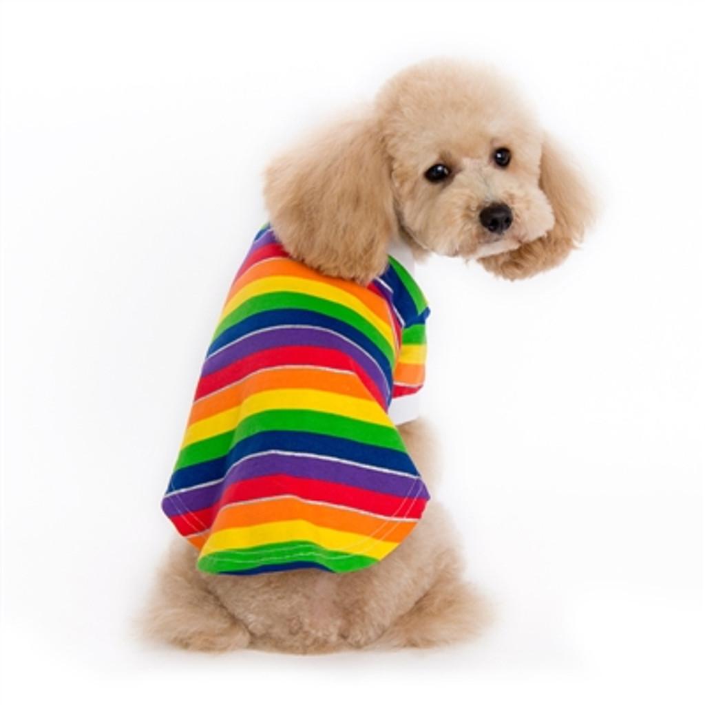 Rainbow Polo Shirt