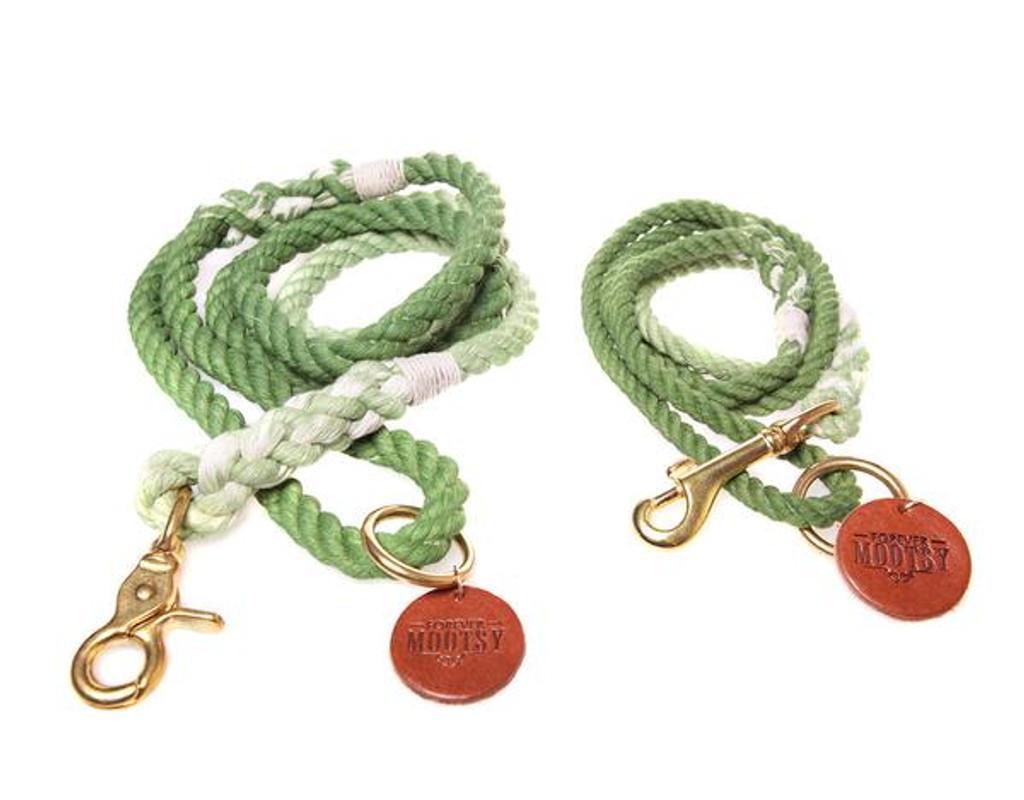 Apple Green Ombré Dog Leash