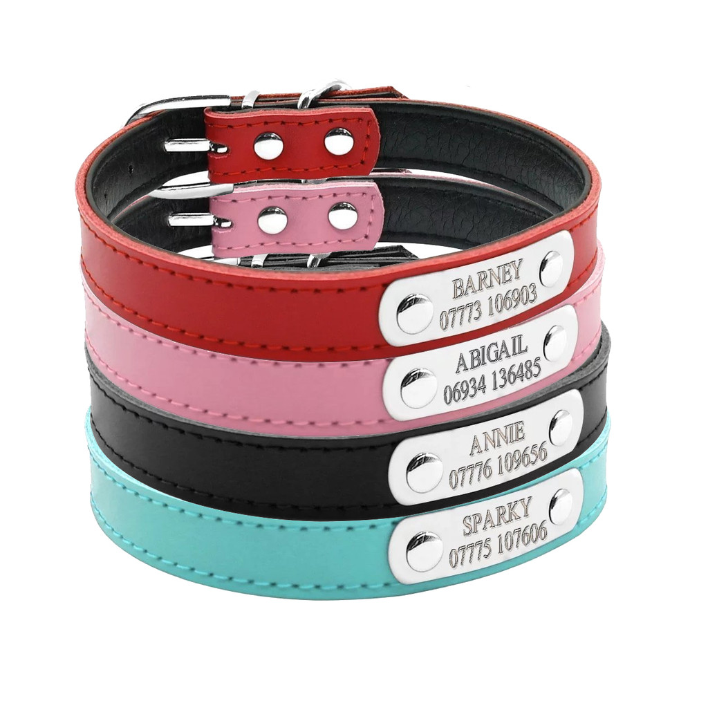 Cute Leather Padded Custom Dog Collar with Engraved Nameplate ID Tag