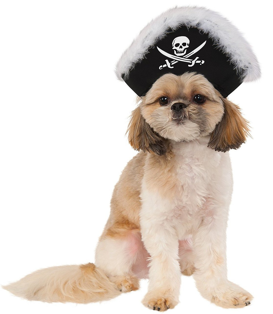 Aye Captain Pirate Dog Hat Costume