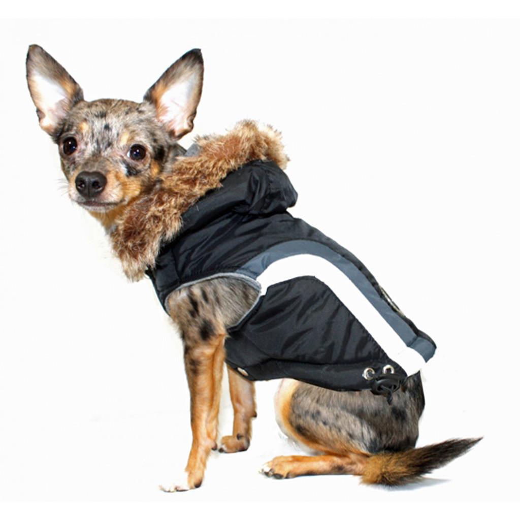 Hip Doggie Swiss Ski Jacket - Black