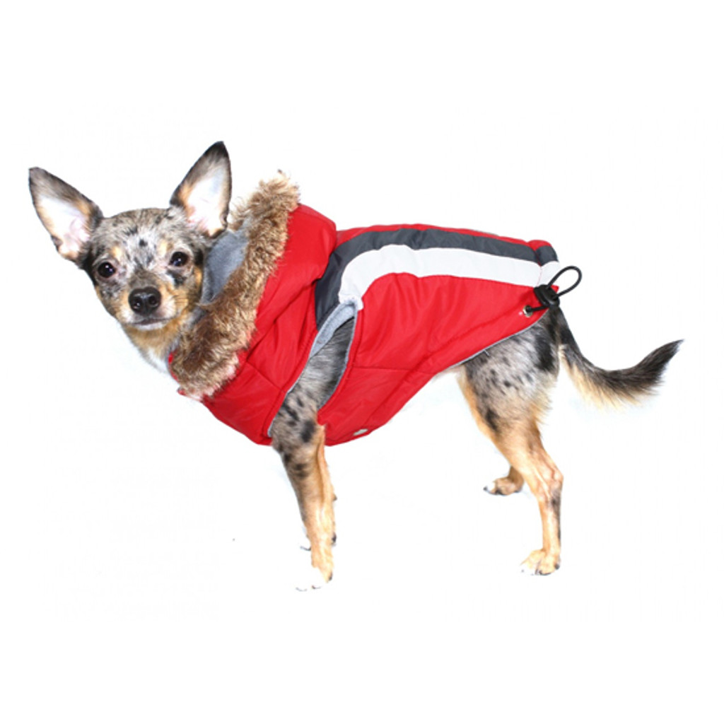 Hip Doggie Swiss Ski Jacket - Red