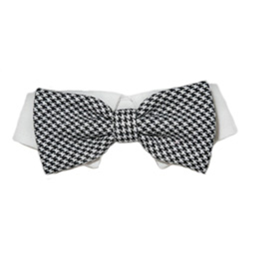 Pooch Outfitters Michael Bow Tie