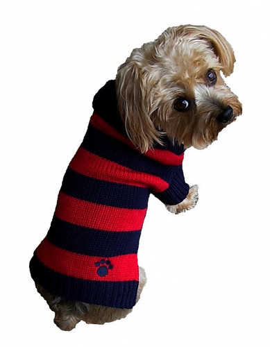 Dallas Dogs Rugby Signature Paw Dog Sweater