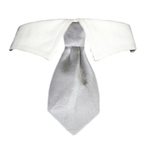 Noah Shirt Collar