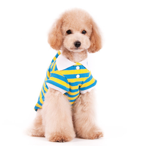 Dogo Dog Stripe Polo Shirt Yellow/Blue - Free Shipping