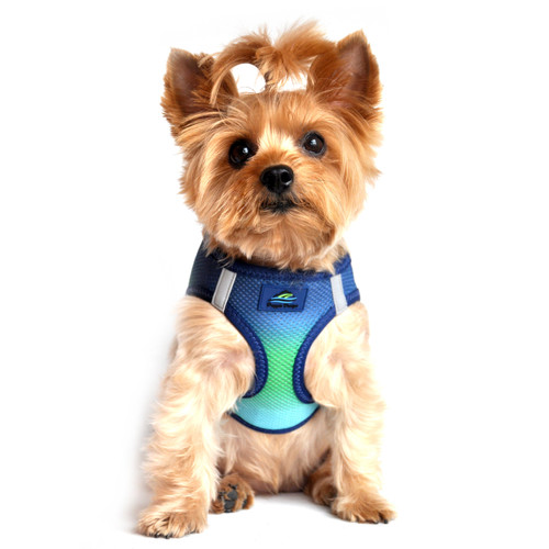 American River Dog Harness Ombre Collection - Northern Lights
