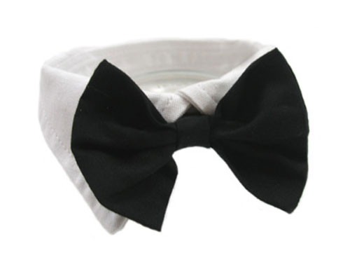 Black Satin Dog Bow Tie and Collar