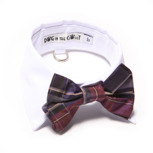 White Shirt Dog Collar with Purple Silk Plaid Bow Tie
