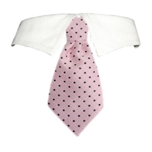 Pooch Outfitters Elliot Shirt Collar