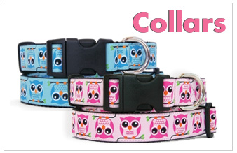 hp-dog-collars.jpg