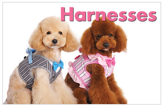 hp-dog-harnesses.jpg