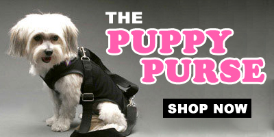 puppy-purse-available.jpg