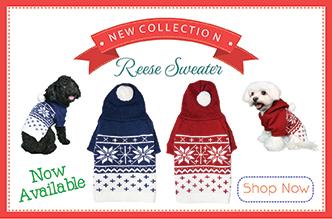 reese-sweater-banner.jpg
