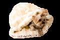 Caramel Mink Plush Cozy Sak
