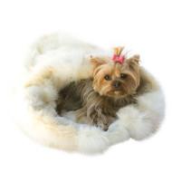 Arctic Fox Luxury Cozy Sak