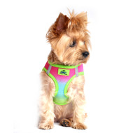 American River Dog Harness Ombre Collection - Rainbow