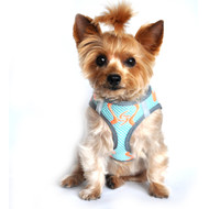 American River Neon Sport Dog Harnesses - Aruba Blue