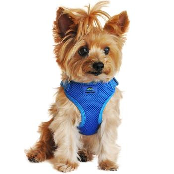 Wrap and Snap Choke Free Dog Harness - Cobalt Blue