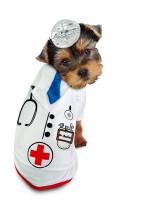 Doctor Barker