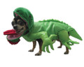 Iguana Costume