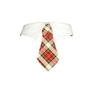 Pooch Outfitters Carter Shirt Collar