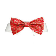 Pooch Outfitters Holly Bow Tie