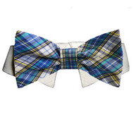 Pooch Outfitters Issac Bow Tie