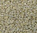 15-P0470 - Permanent Galvanized Silver