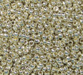 15-P0470 - PermaFinish Silver (15 gr.) (Toho PF558)