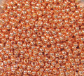 11-P0481, Permanent Galvanized Rose Gold