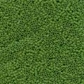 11-DB-0754, Matte Opaque Pea Green