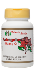 Astragalus: Radix Astragali