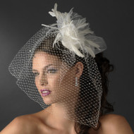 Stunning Birdcage Veil with Feather Fascinator