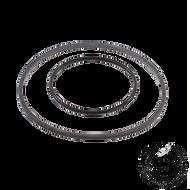 O' Ring Kit (Bolt Style Pump) 310151