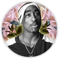 Apple Sauced King Pac Button