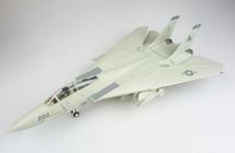 "F-14 Tomcat US Navy ""Black Lions"""