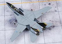 "F-14A Tomcat NF200, VF-21 ""Free Lancers,"" 1995"