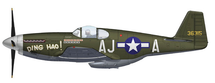 "P-51B Mustang USAAF 354th FG, 487th FS, #43-6314 ""Ding Hao"""