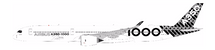 Airbus A350-1000 F-WLXV With Stand
