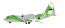 Canada Air Force Lockheed C-130E Hercules (C-130E/L-382) 130307