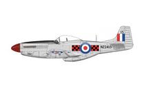 P-51D Mustang RNZAF No.3 (Canterbury) Sqn, New Zealand, 2010