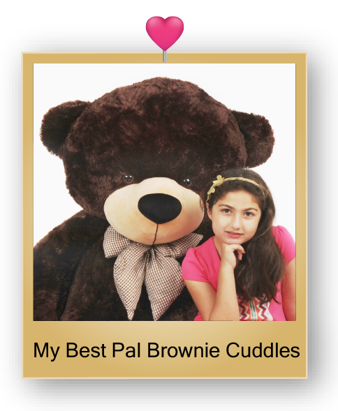 brownie-cuddles-giant-chocolate-brown-teddy-bear-05.png